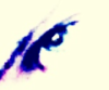 flammerboi userpic