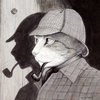 SH Cat