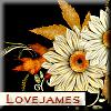 dhamphir - flowers