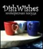 dishwishes userpic