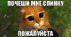 spinku_pochewi