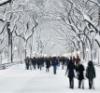 oovda: snow alley