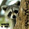 Primeval - Raccoon Write4Me