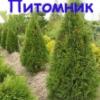 nikogarden userpic