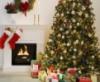 tree, xmas, christmas, Holiday