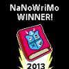 2013 Nano Winner