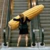 corn_lion