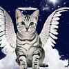 Jo Ann: Cats: Angel kitty halo wings