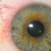 eyeblog userpic