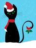 la_gatta_ciara userpic