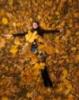 в  осенних листьях...