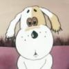 smart_dog_sonya: foto me2