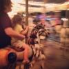Carousel chums