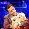 (colbert) puppy