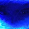 bluuefurry