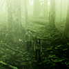 Heather: Twilight - Green
