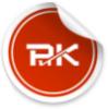 spbrik userpic