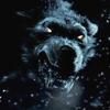 Evil Wolf 3