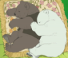 polar bear, grizzly, bara, anime, polar bear cafe