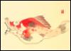 olefish userpic