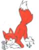 foxbunny_ace