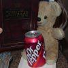 goobie bear gets ready to review the meg