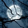 nebo, night