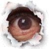 valtra userpic