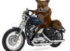 motole userpic