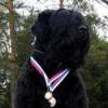 adambrtkennel userpic