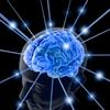 brainverse