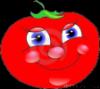 помидор-трансвестит
