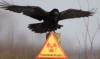 Радиоактивное