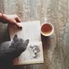 cat&book