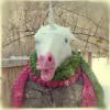 uranium-235: Unicorn