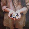 ~ daisies