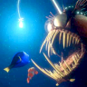 m - Nemo