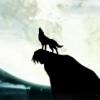 moon, wolf