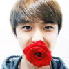rose, kyungsoo