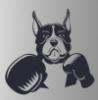 boxer userpic