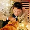Jaelijn: *SPN* Castiel with Cat