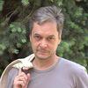 shvechkov userpic