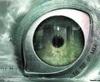 optical_eye