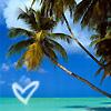 Stock - Island Love