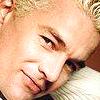 Spike close up