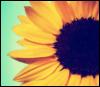 garden_wench userpic