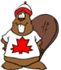 beaver, cartoon, animal, canada