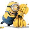 Jasmine: Bananas!!!