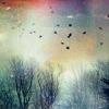 sparkling_mist
