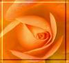 im_gorgeous userpic